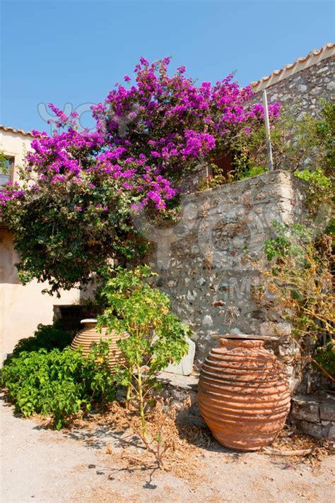greek gardens greek garden gardens 2 pinterest