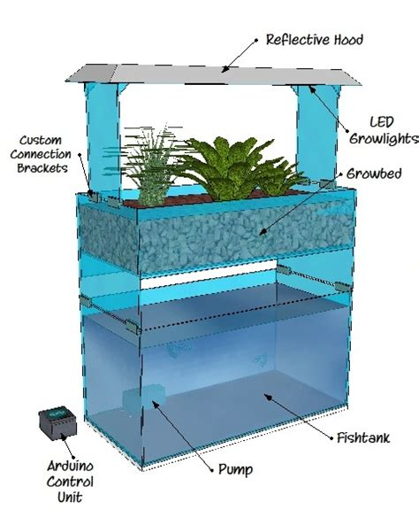 backyard aquaponics system design aquaponics system design