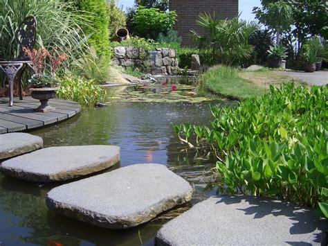 Amenagement De Bassins De Jardin 2484 by Cool Bassin Aquatique De La La Dcoration With Amenagement