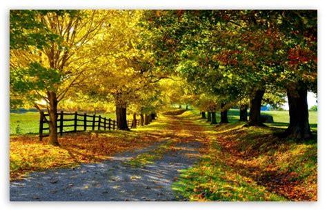 beautiful fall 4k hd desktop the most beautiful autumn 4k hd desktop wallpaper for 4k