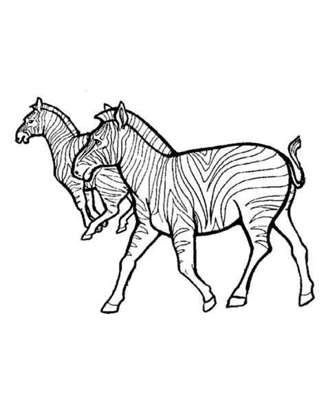 aardvark to zebra animals of africa coloring book books africa coloring pages az coloring pages