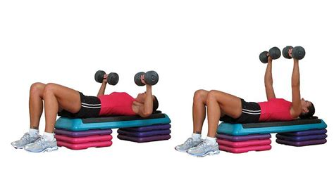 dumbbell back exercises no bench short effective and efficient upper body workout