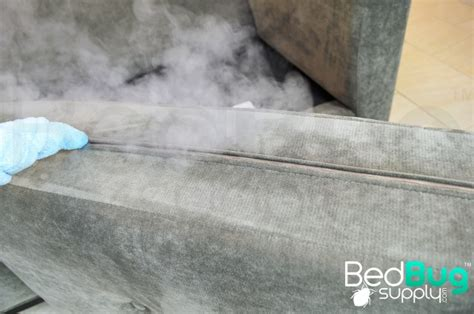 killing bed bugs with steam how to get rid of bed bugs on couches and furniture
