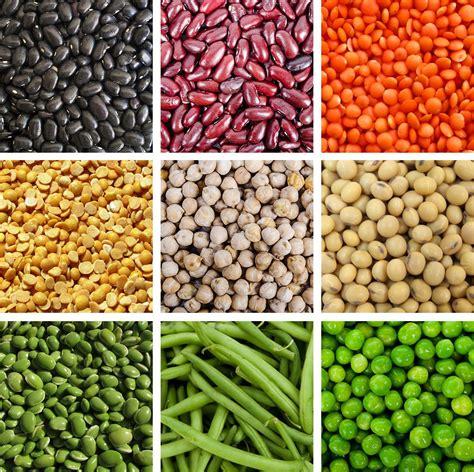 legumes cuisines legumes haleo