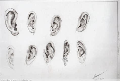 imagenes de narises a lapiz orejas laura v 225 zquez pinte 241 o artelista com