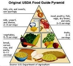diagram of the food pyramid original usda food pyramid photos anatomy system human
