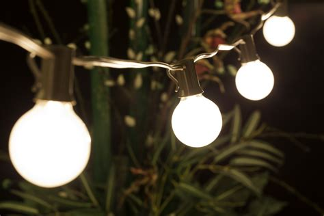 Outdoor Globe String Lights Wholesale 25 Socket Outdoor String Light Kit W G40 Globe Frosted Bulbs 25ft Expandable Brown On Sale