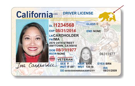 ca id card template dmv to offer real id driver license and id cards january 22