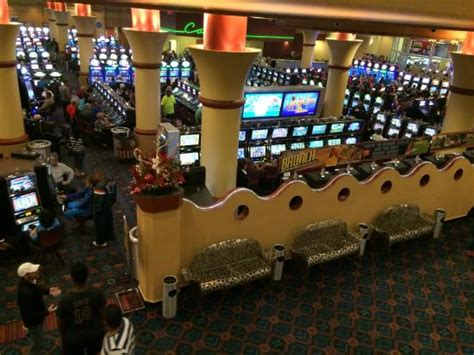 Casino At Miccosukee Resort Gaming Miami Fl Top Tips Miccosukee Resort Buffet