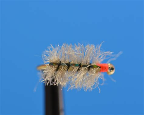 flight pattern of house flies new shop bugs 2015 bighorn angler