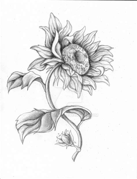traditional sunflower by halasaar01 on deviantart