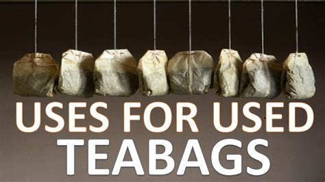 how to use tea bags unbelievable uses for used tea bags youtube