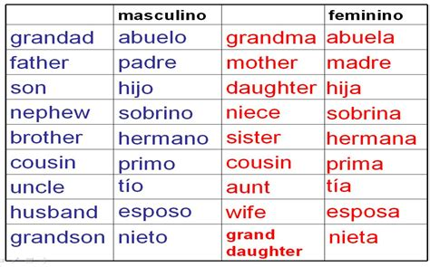 spanish word table deberes vocabulario la familia homework family vocab