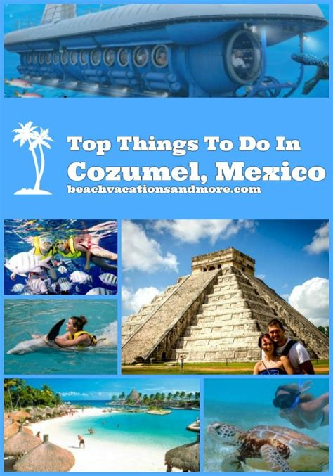 Things To Do In A Cabin by 25 Trending Cozumel Snorkeling Ideas On