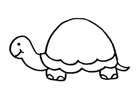 Turtle Outline Vector by Turtle Outline Clipart Best