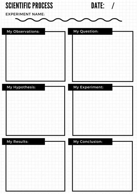 science observation template science observation template images free templates ideas