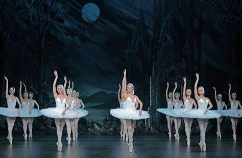 Dm St Kid Swan Biru st peterburg ballet theatre swan lake dancetabs