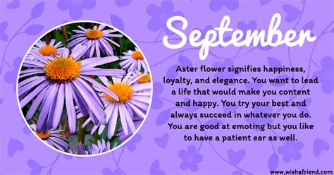 your birth flower is september
