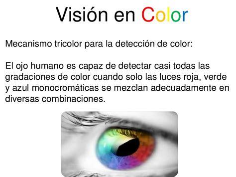 vision color visi 243 n en color