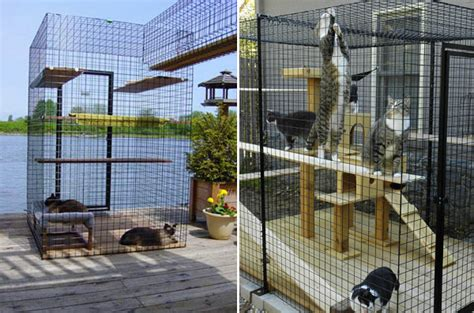 cat patio give your feline friend safe access to the outdoors with a catio