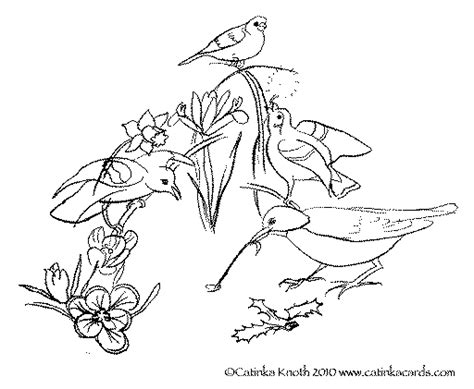 c knotes free drawing of spring flowers download free clip art