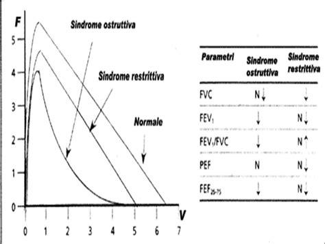test di broncodilatazione spirometria l essenziale