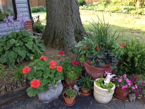 Garden Ideas On Pinterest Container Gardening Garden Ideas Pinterest