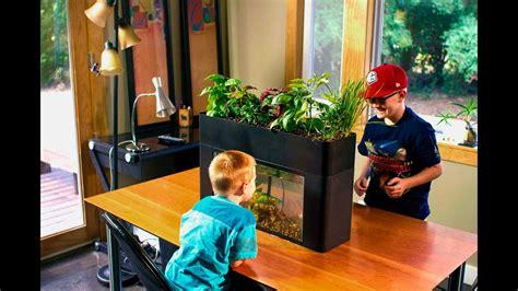 aquaponics diy eco garden  gallon fish tank kit youtube