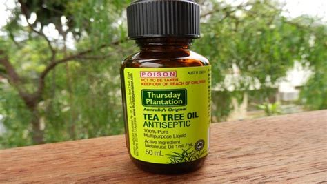 tea tree oil for bed bugs how to get rid of bed bug bites on your skin naturally