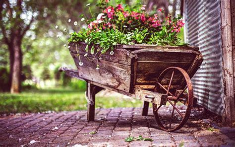 wallpaper 4k vintage vintage flower pot 4k uhd wallpapers for laptop hd