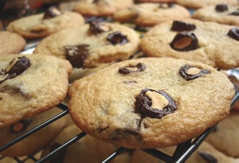 choco almond cookies chocolate almond cookies try it you might like it