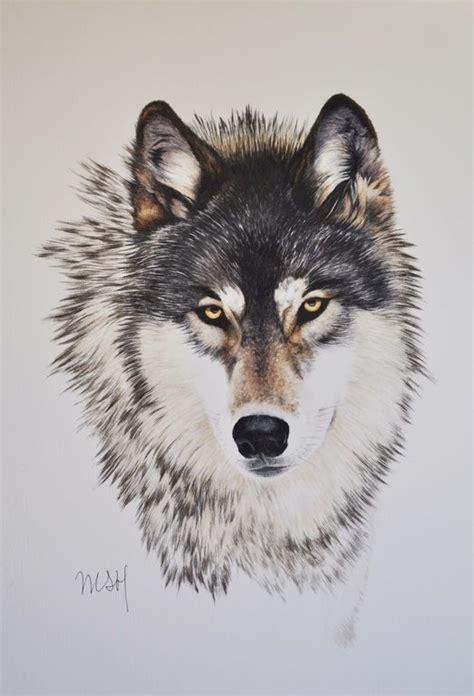 imagenes de animales lobos m 225 s de 25 ideas incre 237 bles sobre tatuajes de lobo en