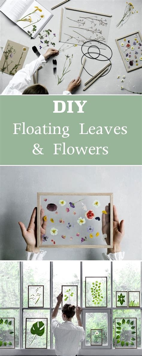 home decor simple best 20 leaves ideas on pinterest plant flora and