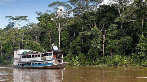 hängesessel amazonas el amazonas ha reducido su capacidad para absorber co2