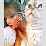 Taylor Swift Meredith Tumblr | 500 x 616 jpeg 111kB