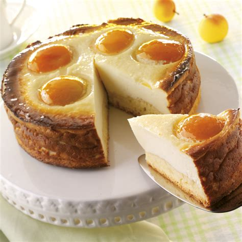 aprikosen quark kuchen aprikosen quark kuchen bilder aprikosen quark kuchen foto