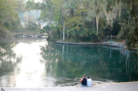 Wekiwa Springs Cabin Rentals by The Picture Of Wekiwa Springs State Park Apopka