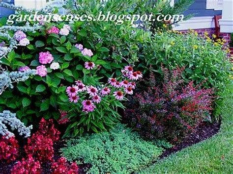 perennial garden repetition in color contrast in form several plants w year round interest