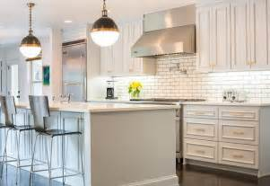 Light Gray Cabinets Kitchen Light Gray Painted Kitchen Cabinets Transitional Kitchen Sherwin Williams Gray Screen