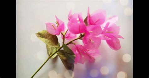 membuat bunga kertas crepe membuat bunga bougenvile dari kertas crepes aneka
