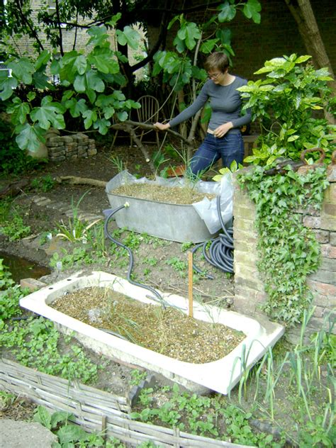 how much is a water bed making reed beds for grey water recycling hackney permaculture