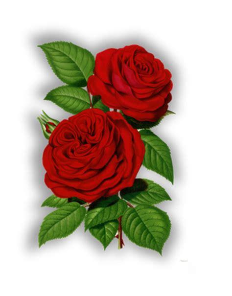 Imagenes De Rosas Rojas Vintage | im 225 genes vintage gratis free vintage images flores y