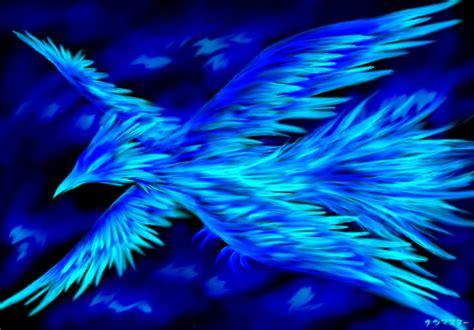 wallpaper blue phoenix atrobuet phoenix images ice phoenix hd wallpaper and