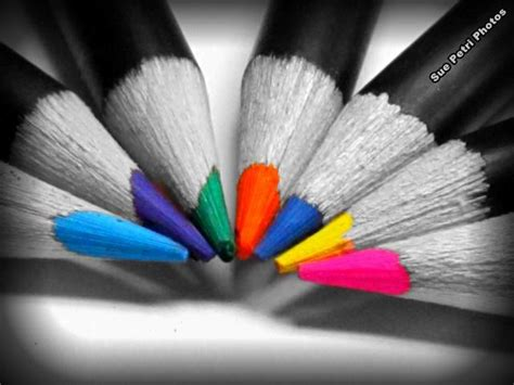 black and white photo with color best 25 splash of color ideas on colour