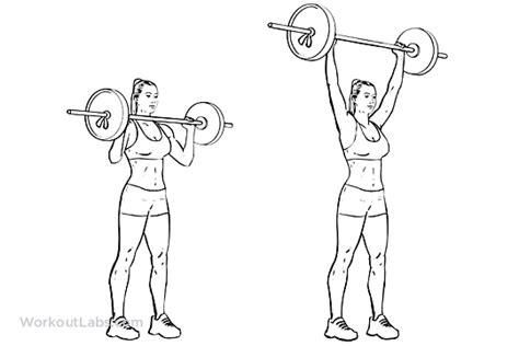 shoulder press diagram standing overhead barbell shoulder press