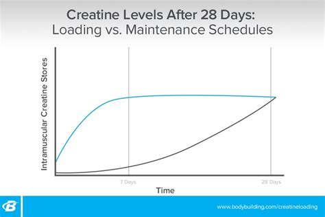 creatine loading phase do i need to load with creatine