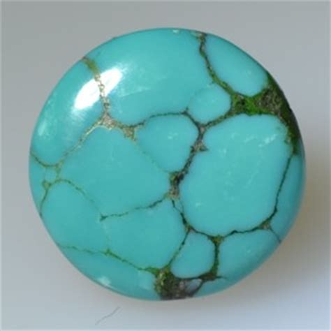 Petrified Wood Fosil Fengshui Symbol Kayu blue sapphire agg0000037 blue sapphire agg0000037