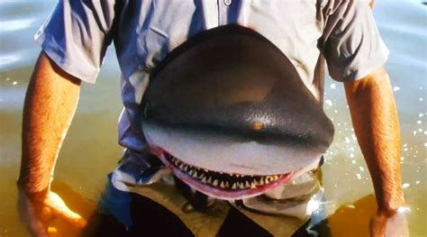 mississippi river sharks shark and awe shark week on the syfy channel blitz