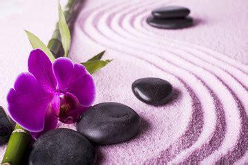 imagenes de fotos zen buscar fotos zen