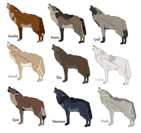 wolf colors semi wolf adoptables open by